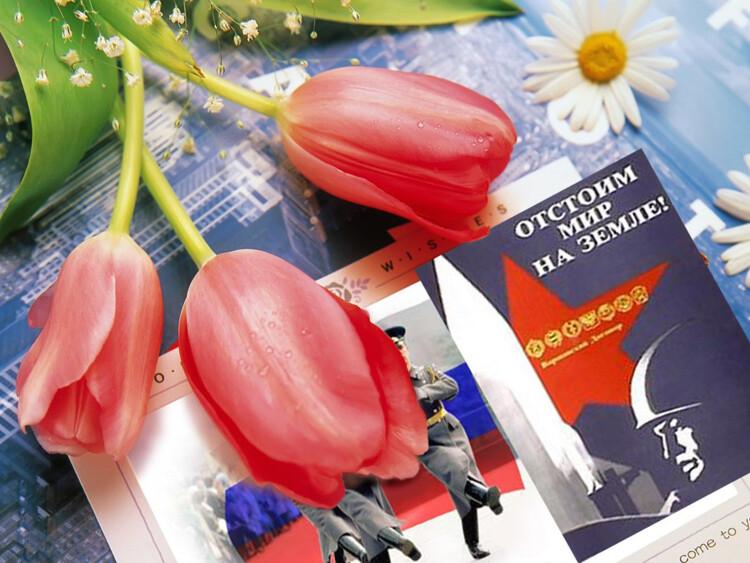 ❶С 23 февраля цветы|Классный час к 23 февраля|Send flowers to Kiev. Flowers delivery to Kiev . PayPal, Visa, MC accepted - jeffreyriddlelaw.com|23 февраля - Советские открытки и цветы мужчинам|}