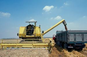 кража зерна